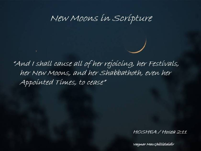 NEW MOON DAYS IN SCRIPTURE 11