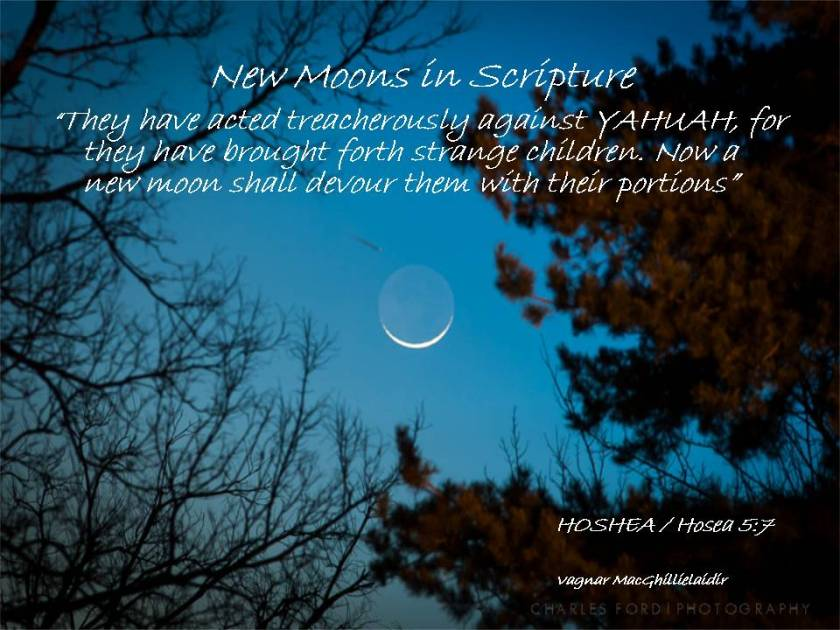 NEW MOON DAYS IN SCRIPTURE 12