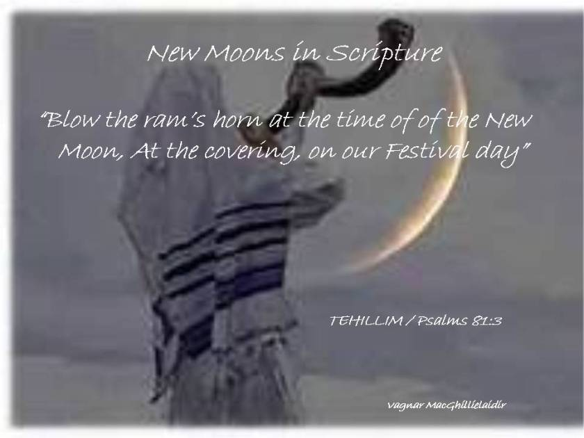 NEW MOON DAYS IN SCRIPTURE 14