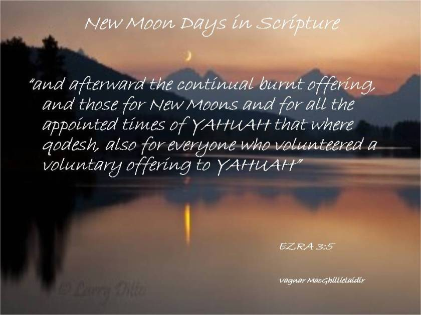 NEW MOON DAYS IN SCRIPTURE 15